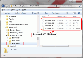 HD Video Recovery from SD cards: Video Recovery: Recovered AVCHD Folders and Files