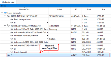A mounted VeraCrypt disk in R-Studio's Drive pane